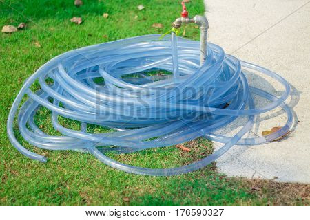 Hose water on the grass green in garden