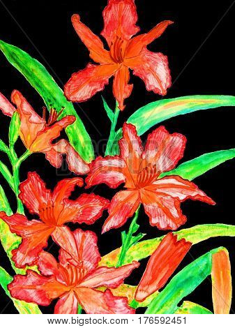 My own painting watercolours. Red daily lilies