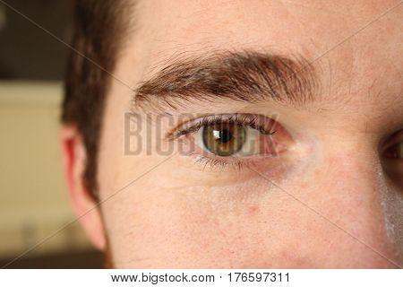 Green / hazel eye of young man