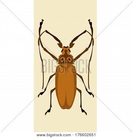 pruner beetle vector illustration style Flat side
