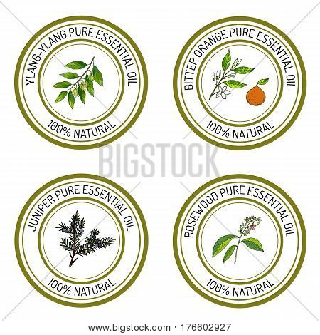 Set of essential oil labels ylang-ylang, juniper, bitter orange, rosewood. Vector illustration