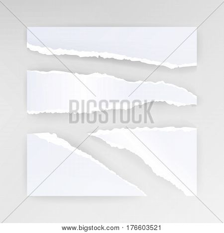 Torn Paper Blank Vector. Set Of Different Shapes Blank Scraps
