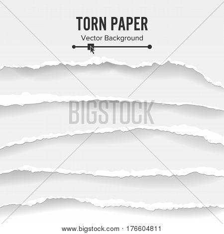Torn Paper Blank Vector. Collection Of White Torn Paper. Ripped Edges