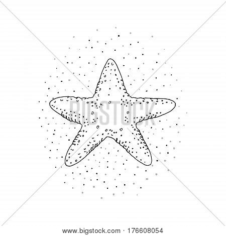 Hand drawn vector illustrations of starfish on a white background sketch doodle.