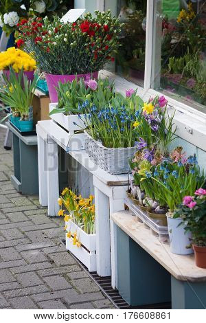 Traditional florists pavement display outside a small independent shop showing hyacinths tulips carnations and daffodils in little baskets