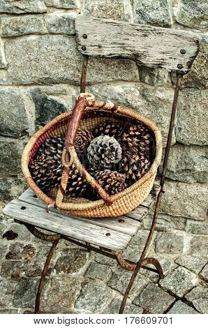 Wicker basket full of dry old pine cones on vintage metal folding chair on stone wall background