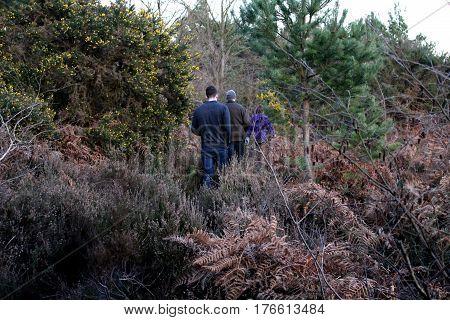 Family woodland walk through dense thicket in spring
