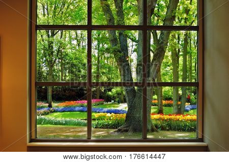 View from the window at the flowering Keukenhof Garden in the beautiful sunny morning