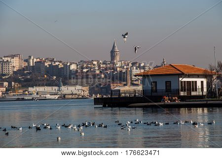 View Of The Galata Tower From The Golden Horn