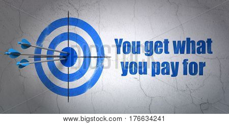 Success business concept: arrows hitting the center of target, Blue You get what You pay for on wall background, 3D rendering