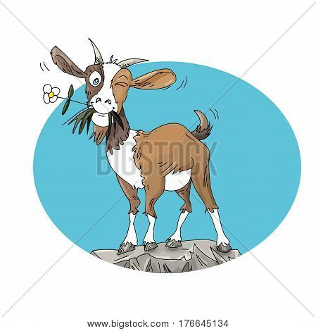 Small goat with flower, in mouth on rock Humorous illustration for kids