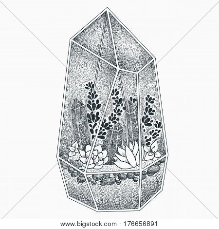 Terrarium with crystals and succulents vector illustration. Blackwork dotwork tattoo design.