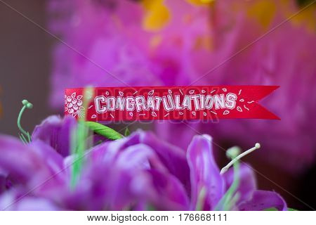 congratulations banner card on top flower and purple blur background