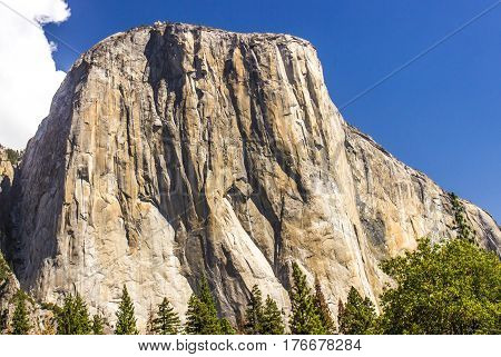 Face Of El Capitan In Yosemite National Park