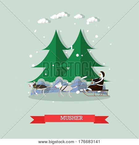 Vector illustration of north landscape and musher riding dog sled. Dog sledding flat style design element.