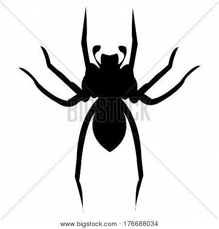 Spider illustration horror internet spooky animal arachnid