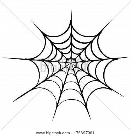 spider web vector spider black widow spider animal wildlife