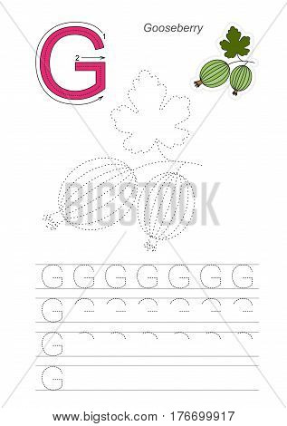 Vector illustrated worksheet to preschool children learn handwriting. Page to be traced for gaming and education with easy educational kid game level. Tracing worksheet for letter G. Goose berry.