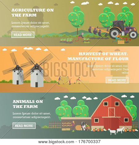 Vector set of farm horizontal banners. Agriculture on the farm, Harvest of wheat. Manufacture of flour and Animals on the farm flat style design elements.