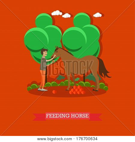 Vector illustration of horse breeder male feeding horse with fruit. Flat style design element.