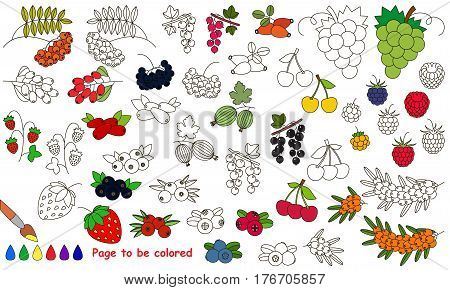 Berries set to be colored. Coloring book to educate kids. Learn colors. Visual educational game. Easy kid gaming and primary education. Simple level of difficulty. Coloring pages.