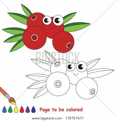 Cranberry to be colored. Coloring book to educate kids. Learn colors. Visual educational game. Easy kid gaming and primary education. Simple level of difficulty. Coloring pages.