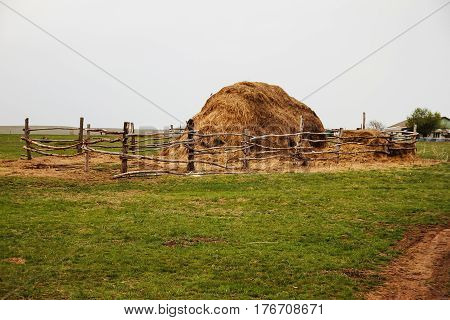 Field With Bales Of Hay Or Straw.