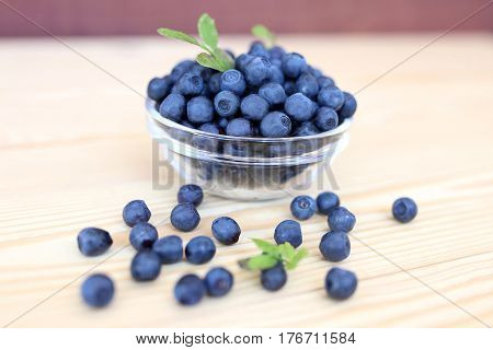 Blueberry on wooden background. Blueberry close up and blueberry background. Berries closeup.