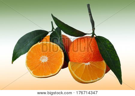 Mandarin, tangerine fruit with leaves isolated on green and orange background