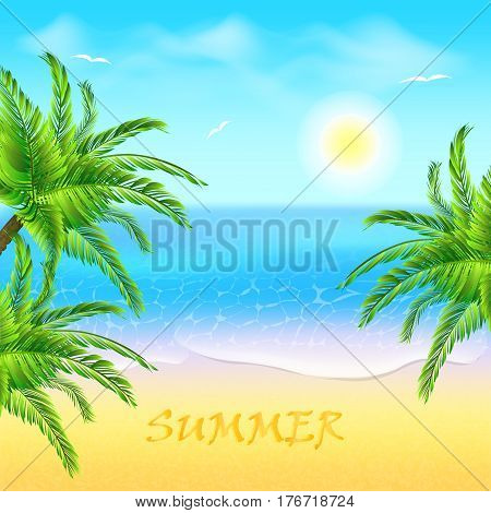 Tropical beach with coconut palm and sea. Sunset in the beach.