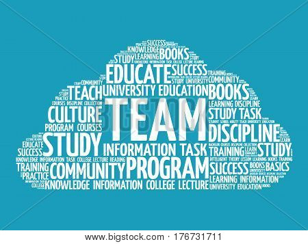 TEAM word cloud , business concept background