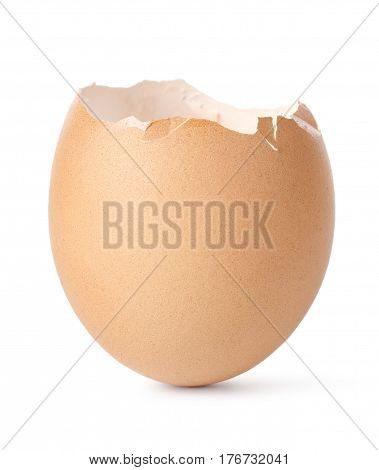 Egg shell isolated on a white background