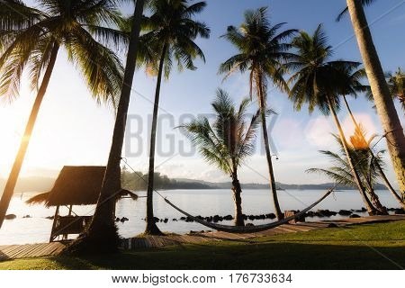 View of tropical beach with coconut palm treeshut and cradle at Phuket Thailand. Summer Travel Vacation and Holiday concept.