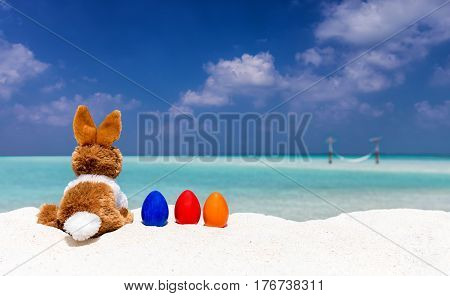 Bunny and colored easter eggs on a beach in the Maldives