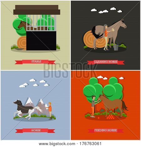 Vector set of horse riding posters. Stable, Cleaning horse, Training horse and Feeding horse flat style design elements.