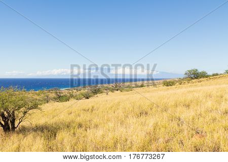 View from the semi desert Kohala grasslands with kaiwe trees on the Big Island of Hawaii and across the Pacific Ocean to the island of Maui. This sea channel is called Alenuihaha or Maui Channel.