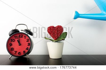 Watering Love Flower pot with clock timing for Love Take Time concept.