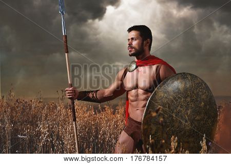Handsome warrior with beard and bare torso holding sword and shield confidently posing among grass. Athletic brunet male like spartan or antique roman soldier with iron weapon and red cloak.