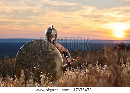 Front view of incognito warrior going forward in attack on war at field. Male with bronze rounded shield and armor, in helmet like spartan, standing among grass. Dark clouds in sky. War in field.