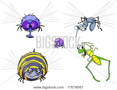 Insects set.