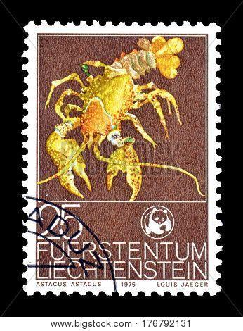 LIECHTENSTEIN - CIRCA 1976 : Cancelled postage stamp printed by Liechtenstein, that shows Noble Crayfish.