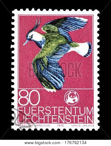 LIECHTENSTEIN - CIRCA 1976 : Cancelled postage stamp printed by Liechtenstein, that shows Northern Lapwing.