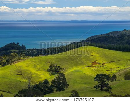 New Zealand Erosion Landscape Green Hills With Sea