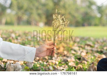 young woman sending bouquet flower for boyfriend in public garden autumn season background