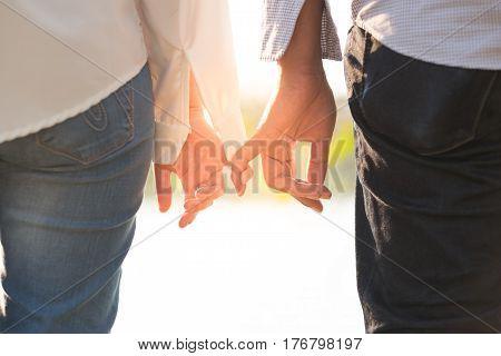 girlfriend and boyfriend being hand to hand looking beautiful sunset in public garden