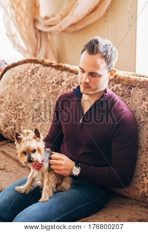 a small dog with a red handkerchief on the lap of men