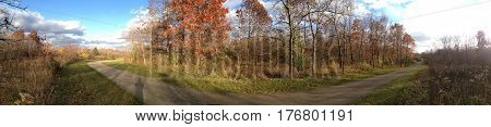 Panoramic of Bode Woods in Streamwood, Illinois showing colorful trees and pretty blue sky
