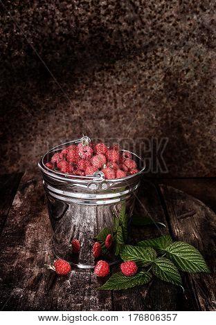 Sweet fragrant wild raspberries in a bucket on a dark background