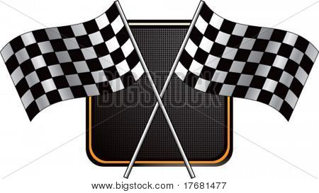 racing checkered flag on web button