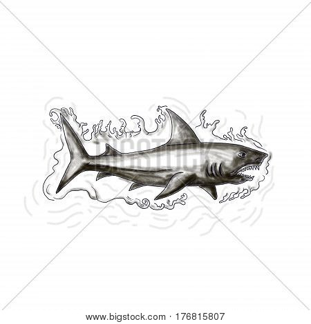 Tattoo style illustration of a shark swimming in water viewed from the side set on isolated white background.